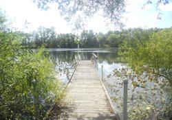 Lake Tucker