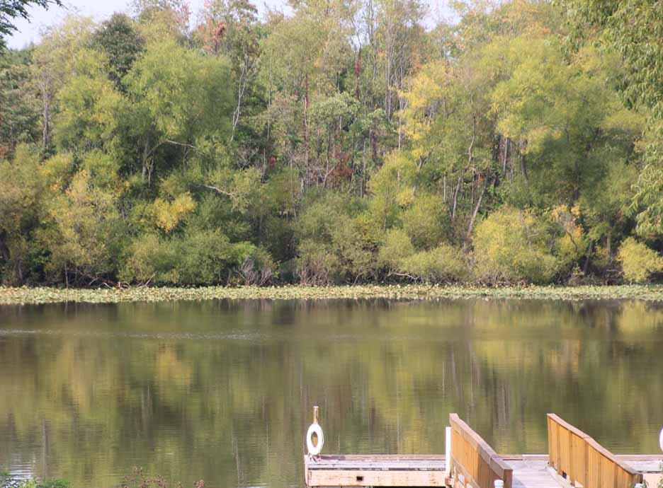 Senior Center Lake